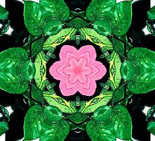 Leafy Pink Flower Kaleidoscope Mandala by TigerLynx