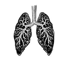 Corrupted Lungs by nabila  rouabah