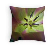 NATURE: .. LIGHT WITHIN Throw Pillow
