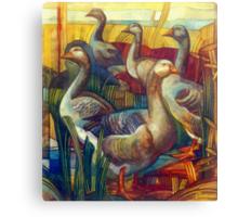 goose lombardella  (anser albifrons) Canvas Print