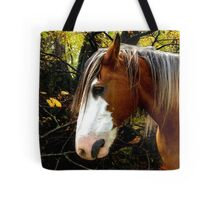 The Old Lady of the Forest Listens for Winter Tote Bag