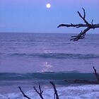 Purple sky highlights full moon by nauticalelf