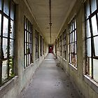ellis island by rob dobi