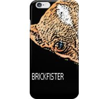 The Brickfister iPhone Case/Skin