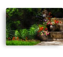 Pots of plants Canvas Print