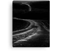 Long Winding Road  Canvas Print