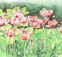 Poppies in the Garden by fay akers