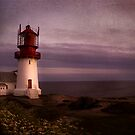 The lighthouse by Anette Tyler