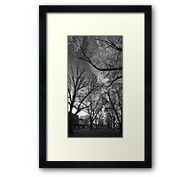 Autumn morning in McCarthur Park Framed Print