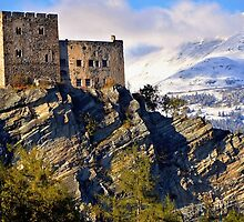 Laudegg Castle Tyrol Austria by Elzbieta Fazel