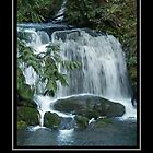 Whatcom Falls by Jack McCallum