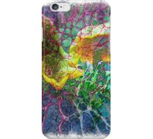 The Atlas Of Dreams - Color Plate 85 iPhone Case/Skin