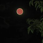 orange moon by ANibbe