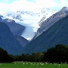 Fox Glacier by Magee