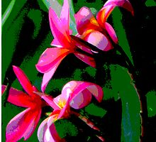 Tropical Frangipanis by Maurz
