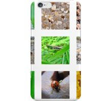 A Little Bug Collection iPhone Case/Skin