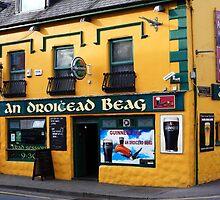Dingle County Kerry Ireland by aidan  moran