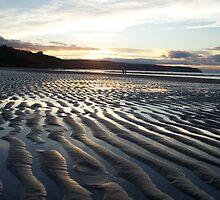strangers on the shore by wayne osmond