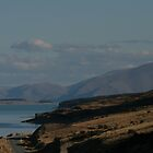 driving past lake Pukaki by nymphalid