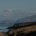 driving past lake Pukaki by nymphalid