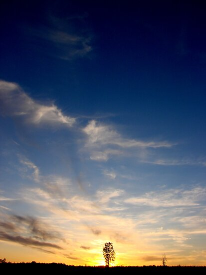 Sunset by Joakim