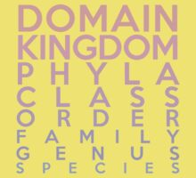 Domain, Kingdom, Phyla, Class, Family, Genus, Species Kids Clothes
