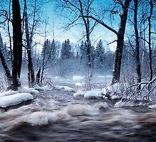 Cold winter days.. by Päivi  Valkonen