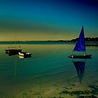 Poole Harbour - Blue Sail  by delros