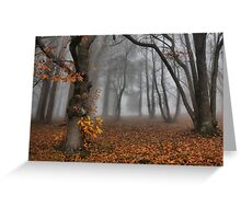 The last of the autumn leaves Greeting Card