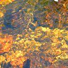 amber spell by delfinada