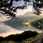 Rowardennan Youth Hostel by Linda  Morrison
