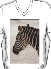 zebra at the zoo T-Shirt
