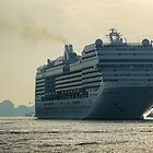 MSC Magnifica by Dennis Wetherley
