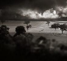 Stormchaser by Aimee Stewart