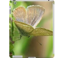 Poised - Long-tailed Pea Blue Butterfly iPad Case/Skin