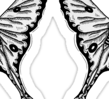 Mirror Moth Sticker