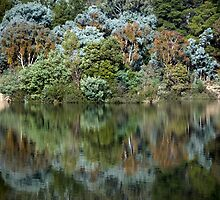 Eildon reflections by Greg Carrick