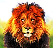 lion_head_02 by tarexayed