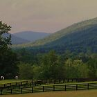 Horses in pasture by marycloch
