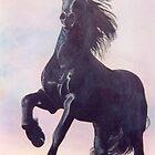 Frissian Stallion 2003 by Joseph Barbara