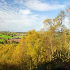 Kinver Edge 01 Aut 07 by nixa