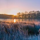 frosty morning sunrise by carlw