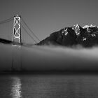 Lion's Gate Bridge by Claire Armistead