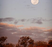Dessert Moon by Mark Williamson