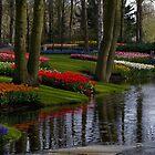 Keukenhof Garden by Suraj Mathew