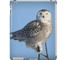 Balancing Talent (with snow) iPad Case/Skin