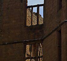 Windows by Steve plowman