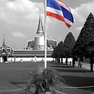 Thai Flag At Palace by Nicholas Richardson