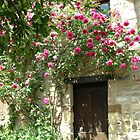 Rose Door by Gabrielle Battersby