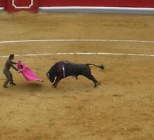 at the bullfight in Granada, Spain by chord0